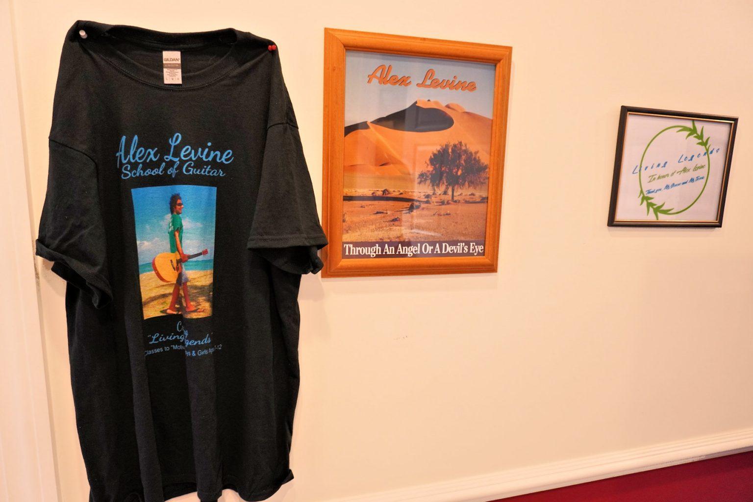 School T Shirt - Alex Levine Album